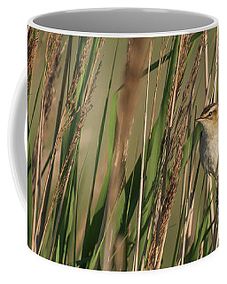In The Reeds Coffee Mug