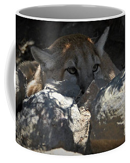 In The Rocks Coffee Mug