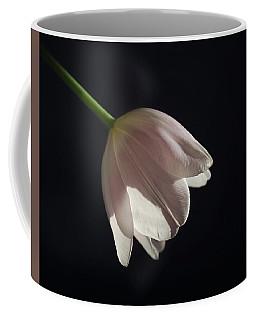 Coffee Mug featuring the photograph In The Spotlight by Kim Hojnacki