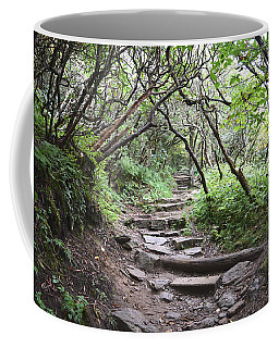 Coffee Mug featuring the photograph The Enchanted Forest Path by Gary Smith