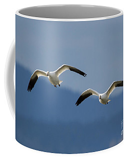 Inbound Coffee Mug