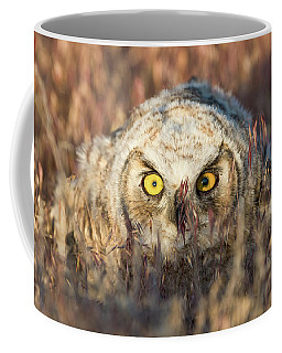 Incognito Coffee Mug by Scott Warner