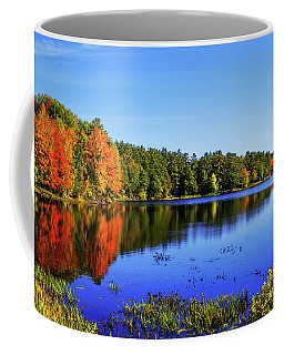 Coffee Mug featuring the photograph Incredible by Chad Dutson
