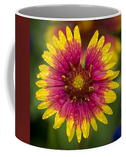 Indian Blanket Coffee Mug