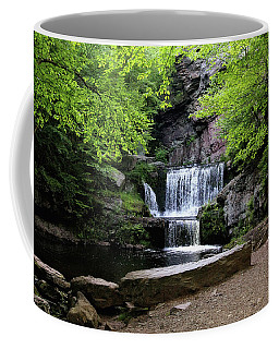 Indian Ladder Falls Coffee Mug