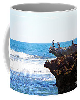 Indian Ocean Birds Resting On Rocks Coffee Mug
