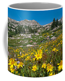 Coffee Mug featuring the photograph Indian Peaks Summer Wildflowers by Cascade Colors