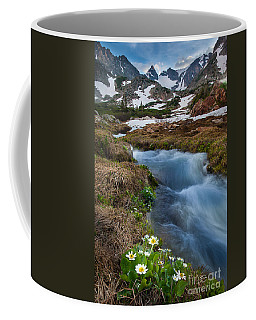 Coffee Mug featuring the photograph Indian Peaks Wilderness by Steven Reed