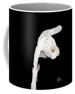 Coffee Mug featuring the photograph Indian Pipe Head by Meta Gatschenberger