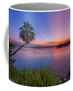 Coffee Mug featuring the photograph Indian River State Park Bursting Sunset by Justin Kelefas