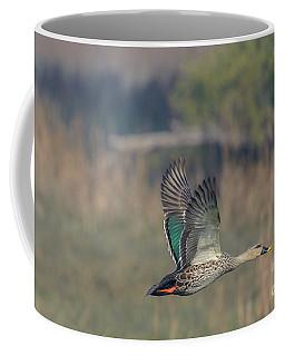 Indian Spot-billed Duck 03 Coffee Mug