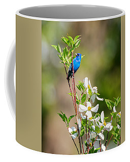 Indigo Bunting In Flowering Dogwood Coffee Mug