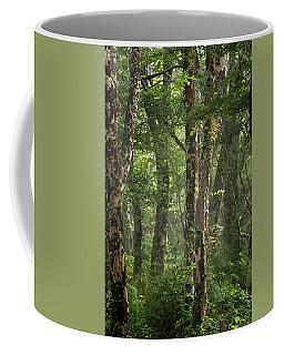Inishoght Mist Coffee Mug