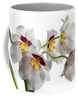 Inner Glow 1 Coffee Mug