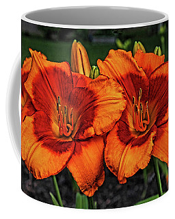 Coffee Mug featuring the photograph Innocent Fire by Judy Vincent