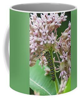 Inp-3 Coffee Mug