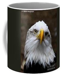 Inquisitive Eagle Coffee Mug