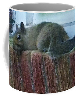 Coffee Mug featuring the photograph Inquisitor Visitor by Denise Fulmer