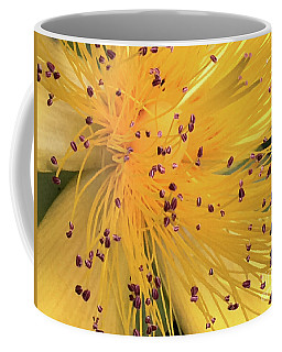Inside A Flower - Favorite Of The Bees Coffee Mug