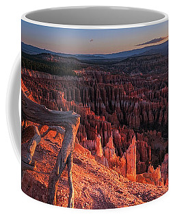 Coffee Mug featuring the photograph Inspiration Point by Edgars Erglis