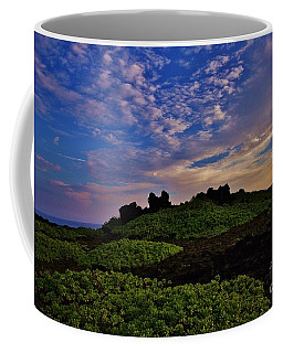 Inspiring Morning Coffee Mug by Craig Wood