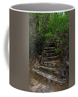 Coffee Mug featuring the photograph Instep With Nature V53 by Mark Myhaver
