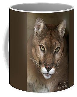 Intense Cougar Coffee Mug