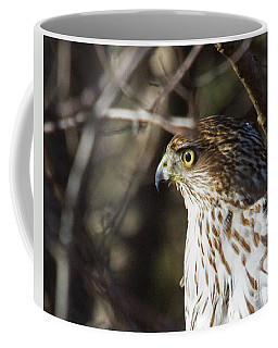 Intense Hawk Coffee Mug