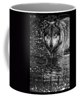 Coffee Mug featuring the photograph Intense Reflection by Shari Jardina