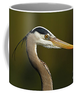 Intensity Of A Heron Coffee Mug
