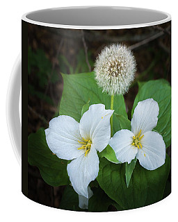 Coffee Mug featuring the photograph Interloper by Bill Pevlor