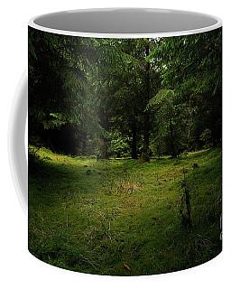 Internationaler Tag Des Waldes - International Day Of Forests - Wood Glade In The Urft Valley Coffee Mug