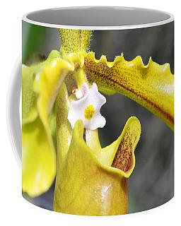 Intimate Orchid 5 - Sharon Cummings Coffee Mug