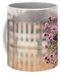 Coffee Mug featuring the photograph Into The Asters by Viviana  Nadowski