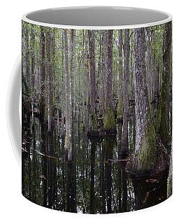 Into The Cypress Swamp Coffee Mug