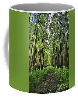 Coffee Mug featuring the photograph Into The Forest by DJ Florek