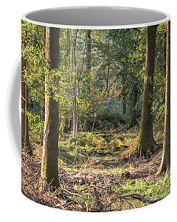 Into The Forest Coffee Mug