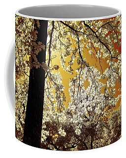 Coffee Mug featuring the photograph Into The Golden Sun by Linda Unger