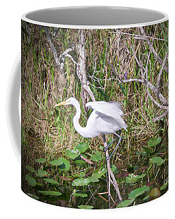 Into The Swamp Coffee Mug by Judy Kay