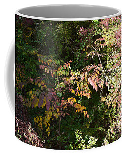 Into The Unknown 2 Coffee Mug