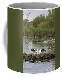Coffee Mug featuring the photograph Into The Water by Alyce Taylor