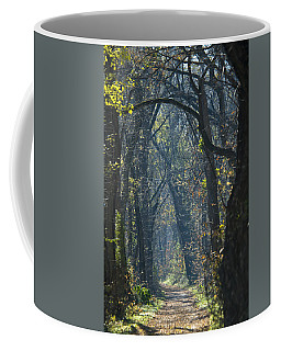 Into The Wood Coffee Mug