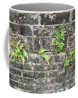 Intrepid Ferns Coffee Mug