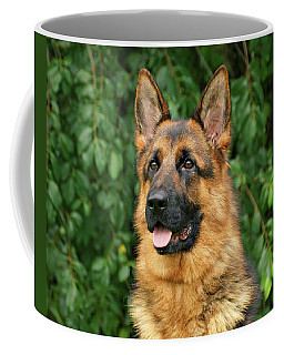 Coffee Mug featuring the photograph Intriguing Ida by Sandy Keeton