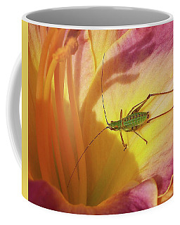 Investigating Bug Coffee Mug