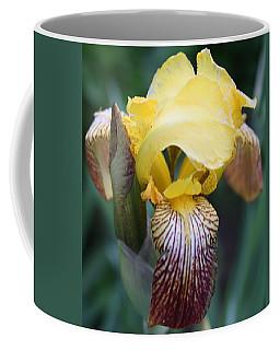 Iris 2 Coffee Mug by Bruce Bley