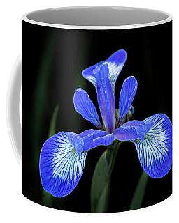 Iris #2 Coffee Mug