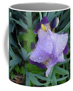 Iris After The Rain IIi Coffee Mug