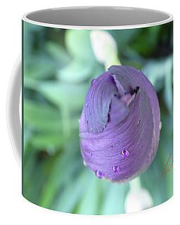 Iris After The Rain Vi Coffee Mug