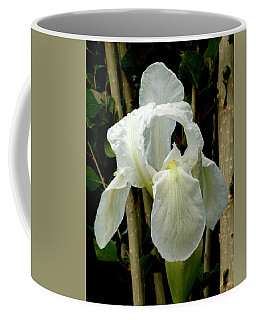 Iris After The Storm Coffee Mug by Charles Ables